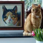 otoreportage Op Mix Erf - Erfdieren - Katten Mix en Juud
