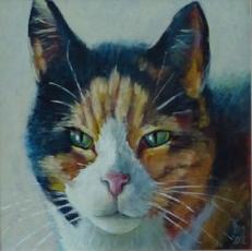 Website Op Mix erf van Wendy Phaff - geïnspireerd op kat Mix