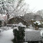 Op Mix Erf - Blog - teksten - Nederland onder een laag sneeuw
