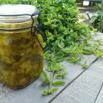 Op Mix Erf - Hemels gerechten - Wendy Phaff - ingemaakte courgette in zoet-zuur
