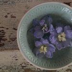 Op Mix Erf - bloemen en planten - Wendy Phaff - Ridderspoor bloemen in kommetje
