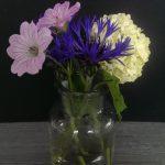 Op Mix Erf - bloemen en planten - Wendy Phaff - Korenbloem - Viburnum - Ooievaarsbek
